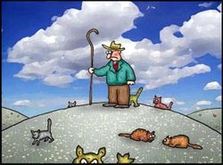HerdingCatsCartoon