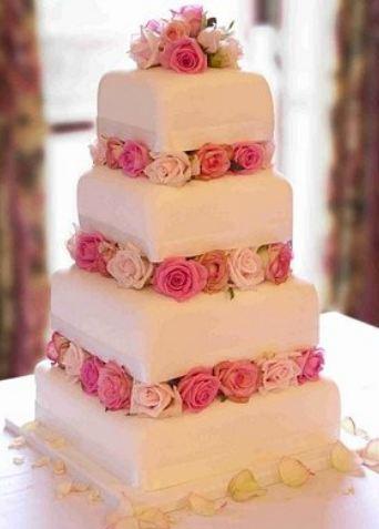 Scam-cake